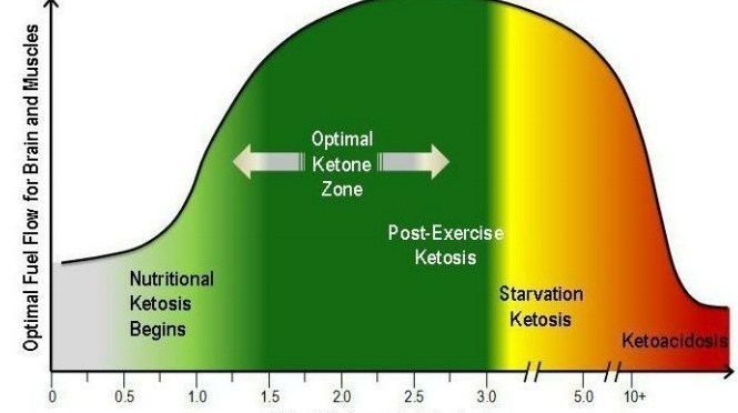 how to test if you are in ketosis
